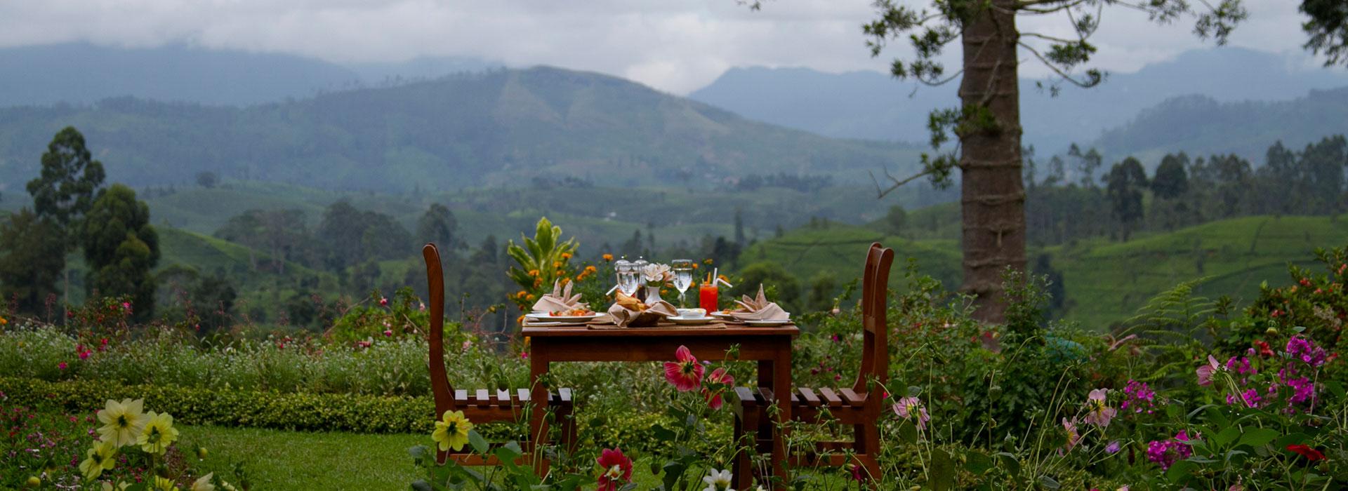 Governor S Mansion In Hatton Sri Lanka Tea Estate